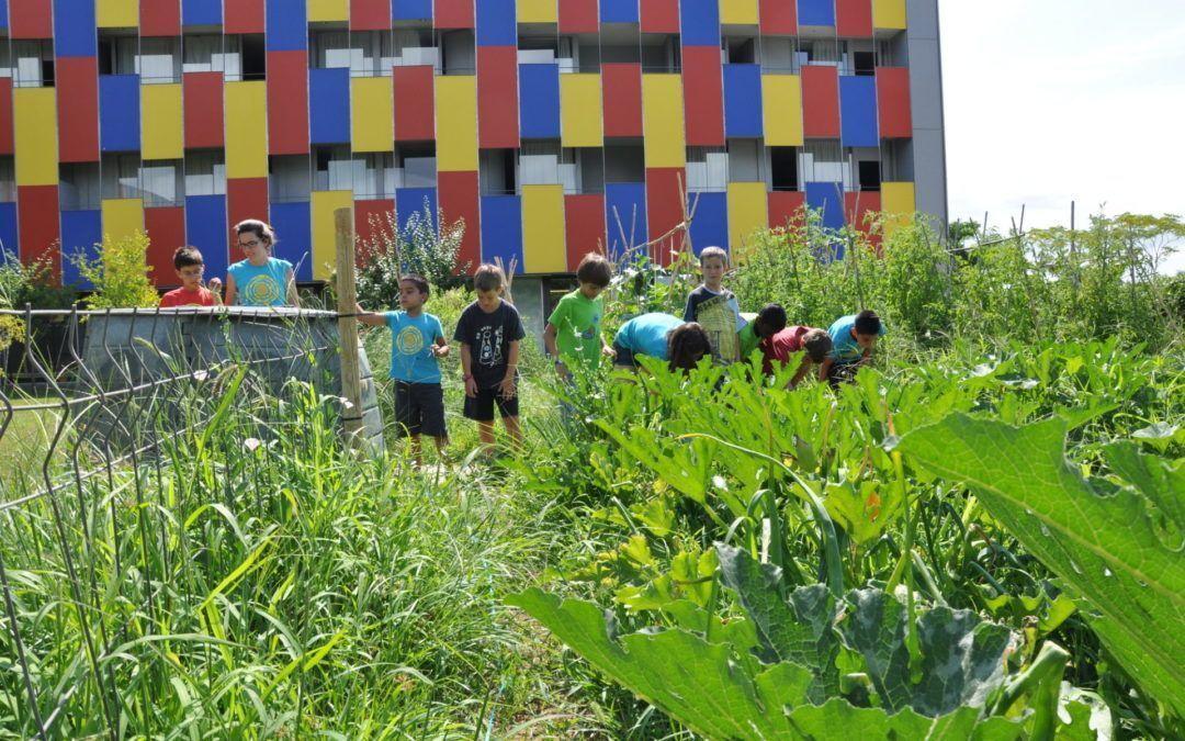 Edificis sostenibles: com estalvien energia i aigua?