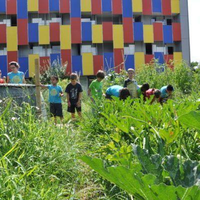 Edificios sostenibles: ¿cómo ahorran agua y energía?