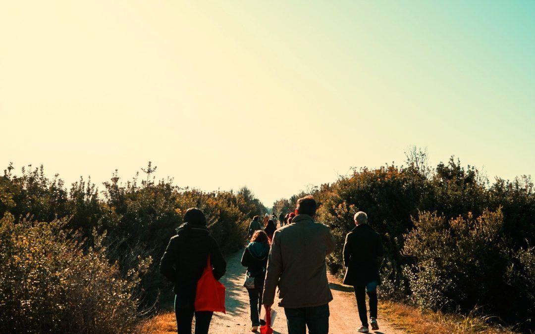 Història del Delta del Llobregat