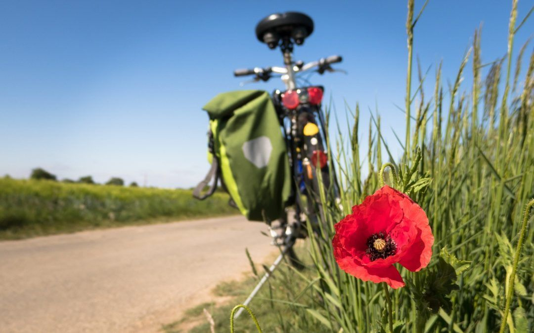 ¡Alquiler de bici gratis con tu reserva online!
