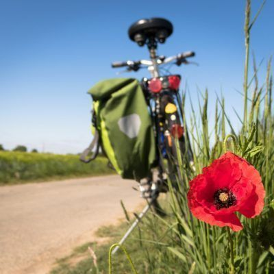 Free bike rental with your online booking!