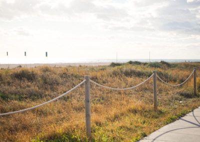 Dunas de la Playa de Castelldefels 3