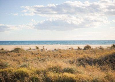 Dunas de la Playa de Castelldefels 2