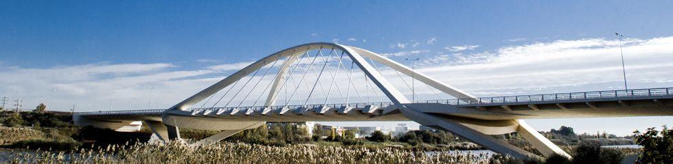 Puente de Nelson Mandela